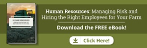 human resources hiring ebook