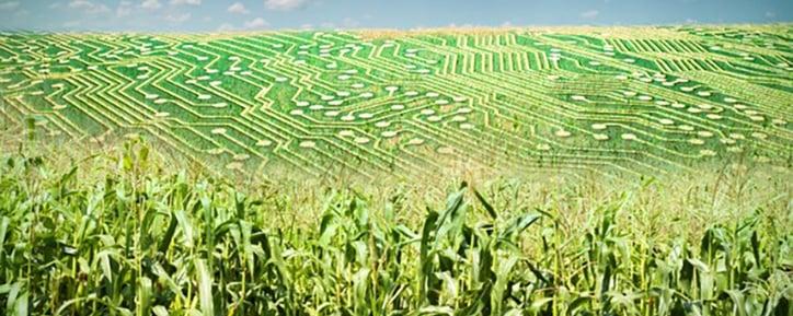 Big_data_agriculture.jpg