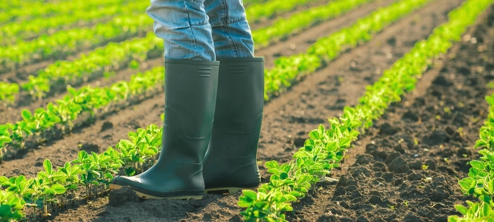 Boots-soil