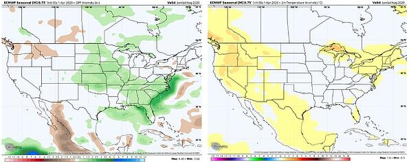 ECMWF precip and temp forecast