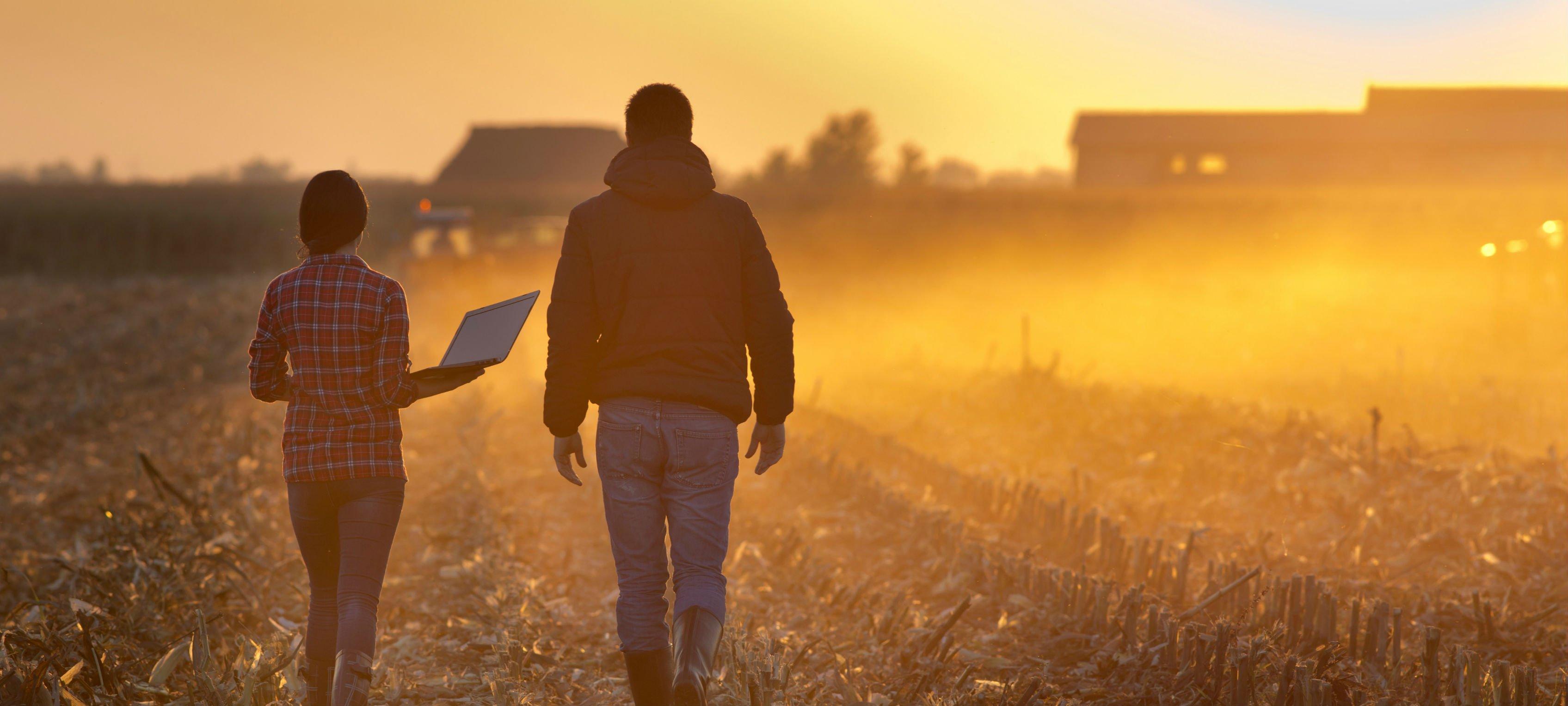 walking in field