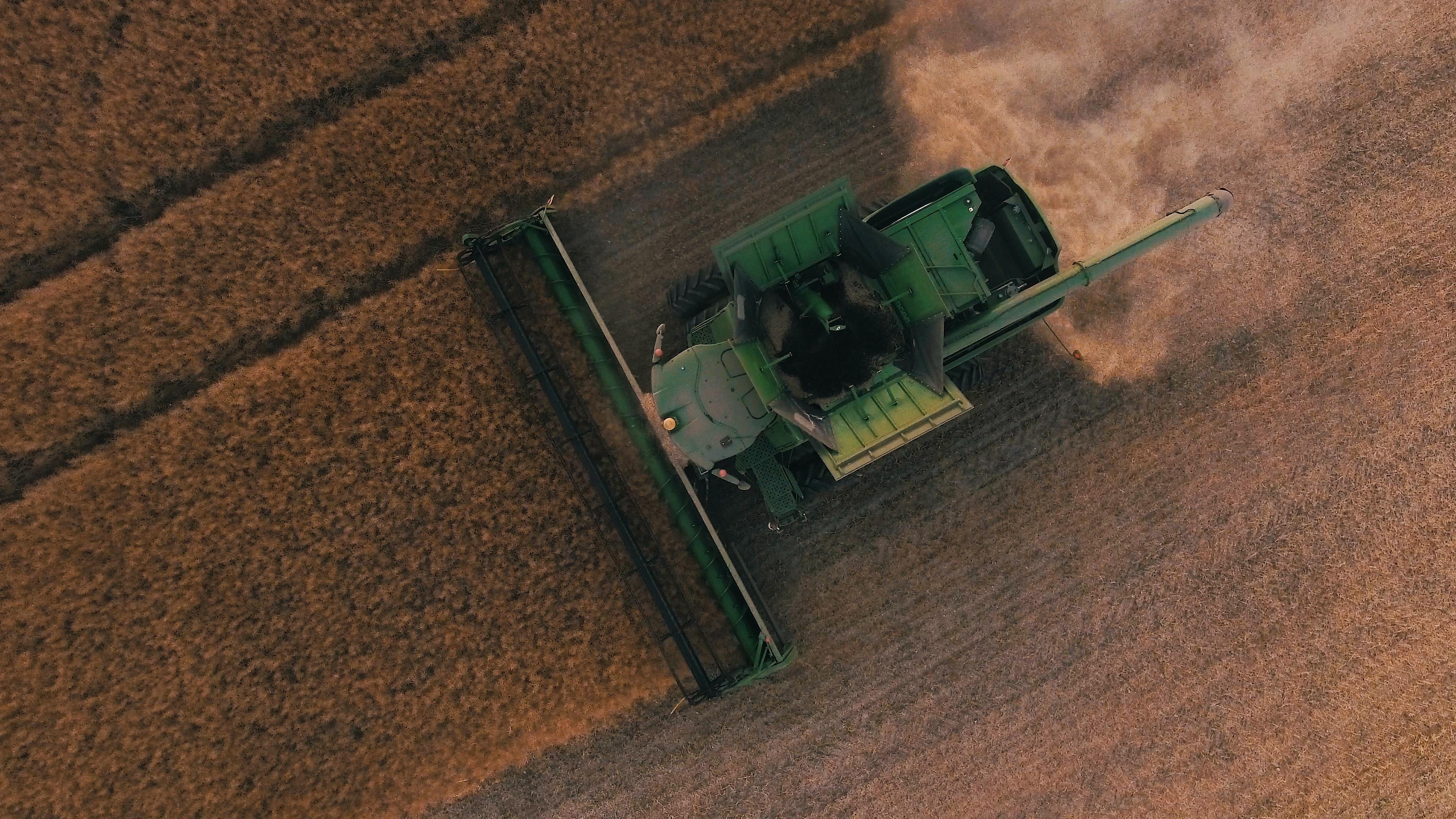 combine-harvesting-crop