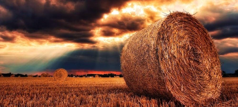 hay bales farmland