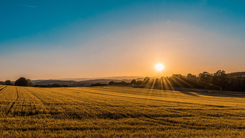 sun-shining-over-field-at-sunset