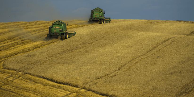 tractors-in-field-1-1