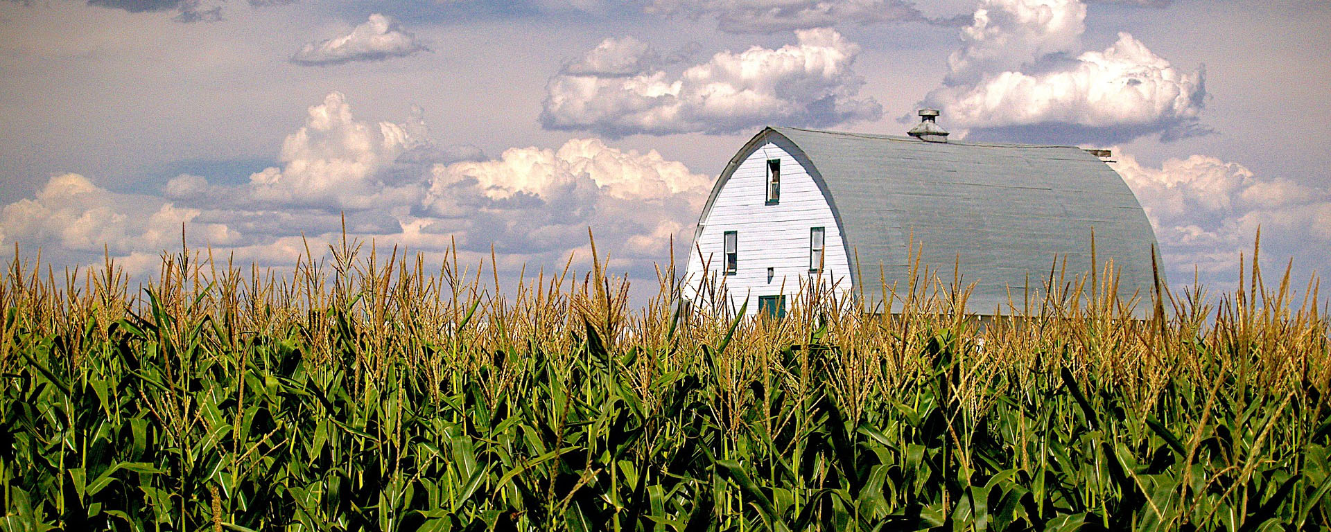 Farm Taxes - Buying & Selling Farmland Part 2
