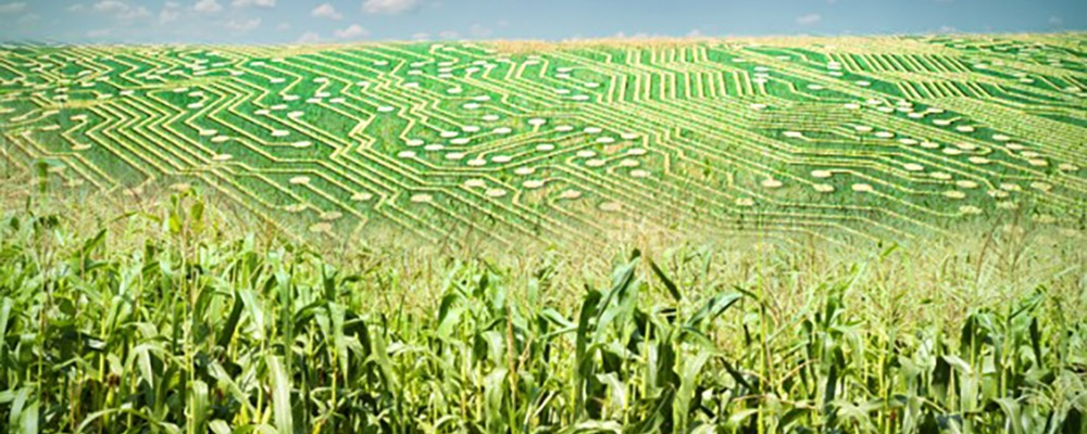 Why Are Some Family Farms Resisting Technology? And How Will That Fuel Consolidation in Row Crops?
