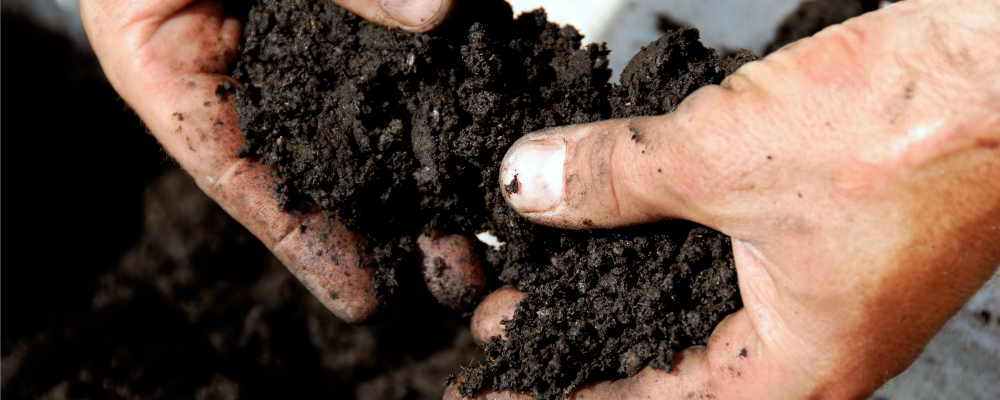 Never Say Never About Soil Management