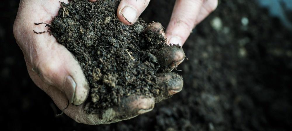 What is Grid Soil Sampling? A Deeper Look