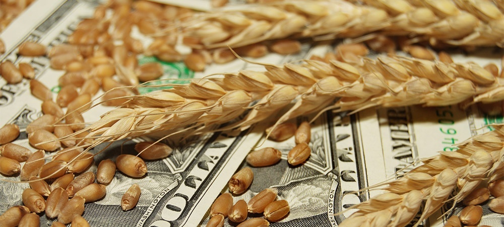 How Can You Get Top Dollar for Your Grain?