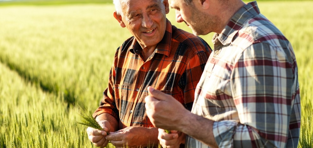 How Do You Know When You Need Agricultural Consulting and Coaching?