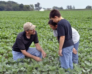 Maximize Revenue Through Crop Sales
