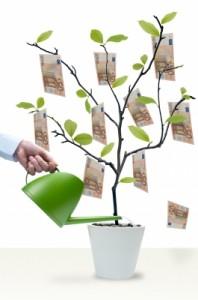 Financial Management—Farm Profitability