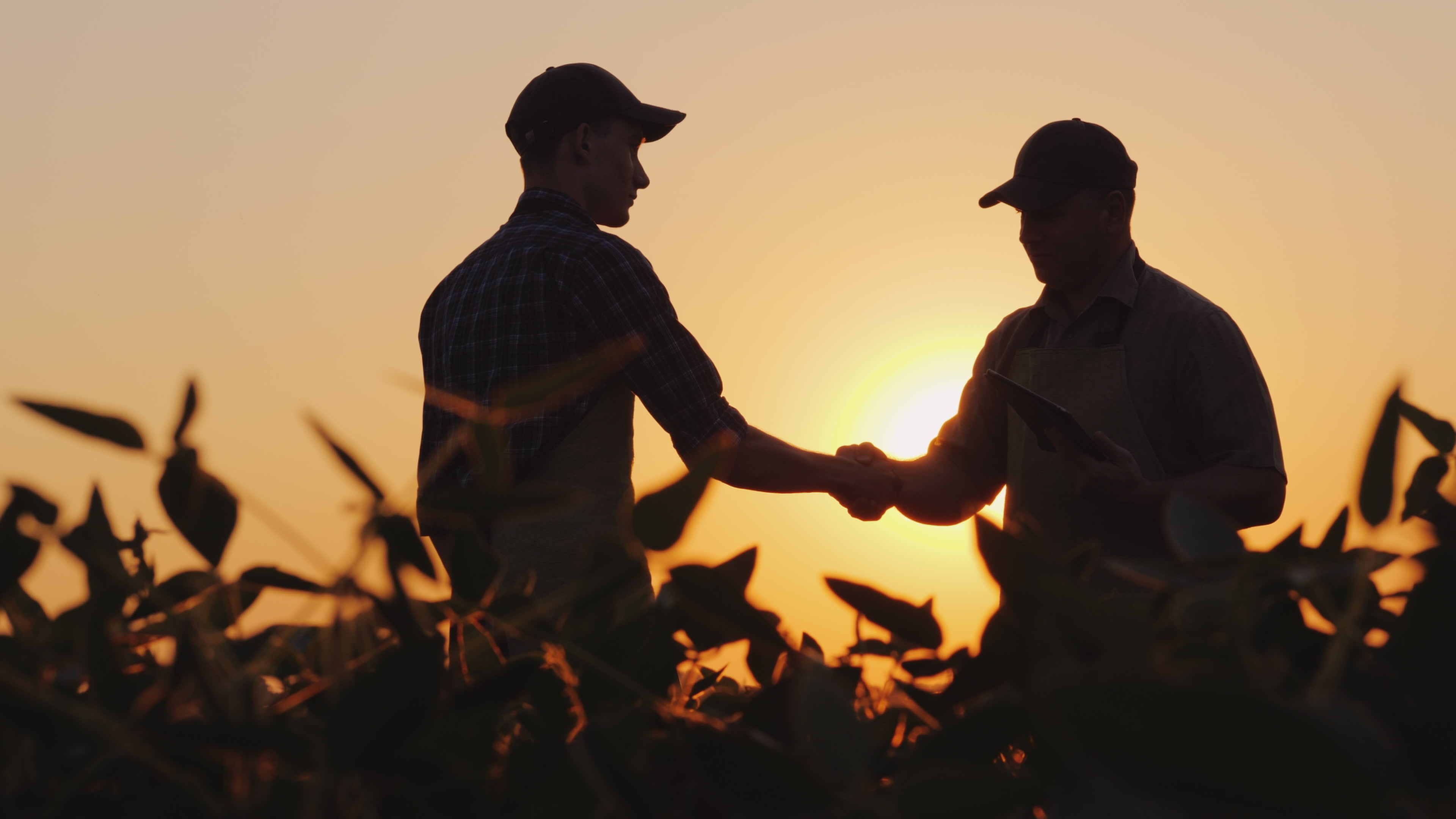 Where Do Ag Consultants Fit In Your Operation?
